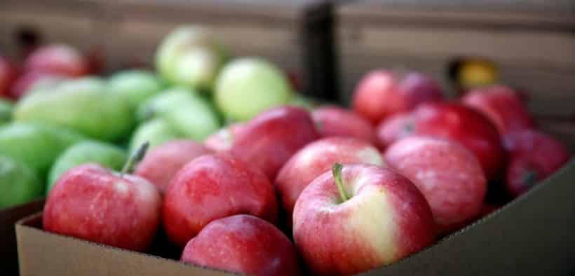Washington State apple industry